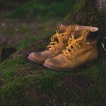 paire de chaussures de randonnée posée au pied d'un arbre